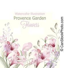 tuin, watercolor., lavendel, kleuren, vector, pastelate, delicaat, bloemen, provence, kaart