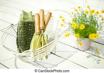 tuinieren, dahlberg, gereedschap, madeliefje