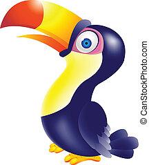 tukán, madár, karikatúra
