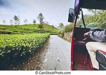 Tuk tuk taxi on the road through tea plantations in Sri...