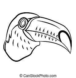 tukan, fågel