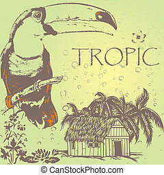 tukan - grunge toukan on the tropic palm beach in rain