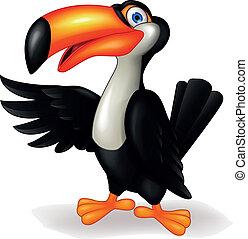 tukan, vogel, karikatur