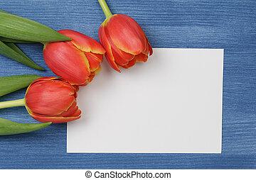 tulipán, con, blanco, nota papel
