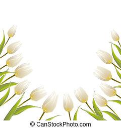 tulipán, visszaugrik virág, csokor, helyett, -e, kártya, design.