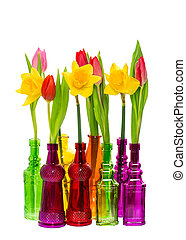 tulip and narcissus flowers in colorful glass vases