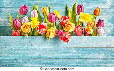 Tulip border with copy space