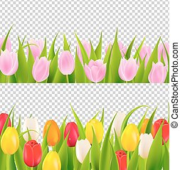 Tulip rows. Three rows of colorful grass & tulips. Tulips Clip Art Border