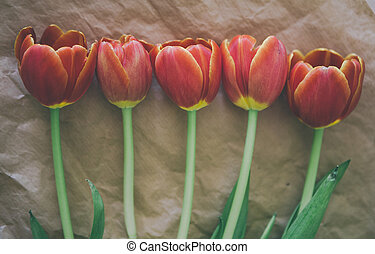tulips in a row on craft paper