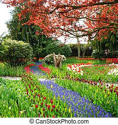Tulip farm landscape