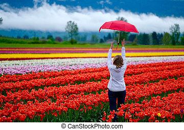 Tulip festival in Fraser Valley near Chilliwack.