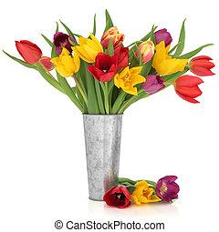 Tulip Flower Beauty