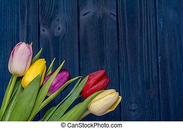 Tulip flower bouquet on wooden blue background