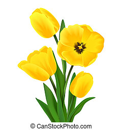 Yellow blossoming tulip flower bouquet realistic vector illustration