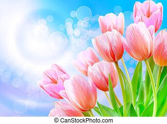 Tulip flowers close up - Close up of fresh beautiful tulip...
