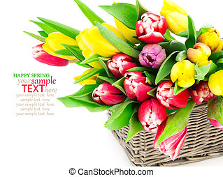 tulip flowers in a basket on a white background
