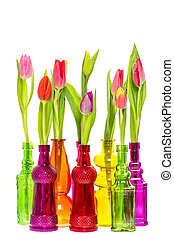 Tulip flowers in colorful glass vases over white background