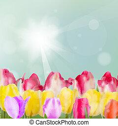 Tulip flowers on blue background. EPS 10