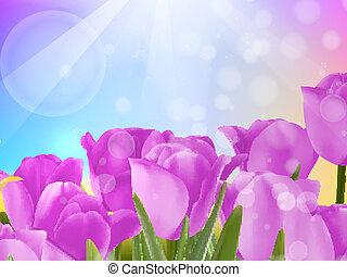 Tulip flowers on blue. EPS 10