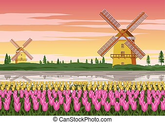 tulip garden, famous symbol of Holland and wind mill around with beautiful nature, vintage color