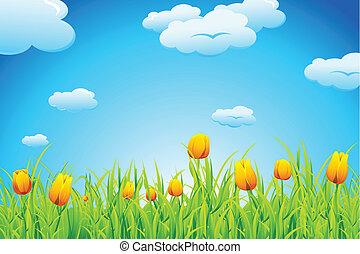 Tulip Garden - illustration of landscape with tulip garden...