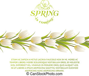 Tulip spring flowers bouquet for your card
