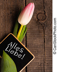 Tulip with blackboard