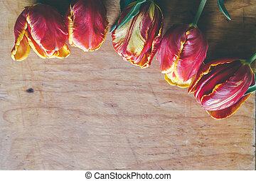 tulipa, buquet, ligado, madeira, tábua, com, livre, espaço