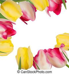 tulipa, flores, formando, com, cópia, space., eps, 8
