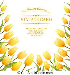 tulipa, flores mola, buquet, para, seu, cartão, design.