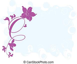 tulipa, quadro