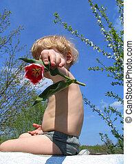 tulipa, segura, criança