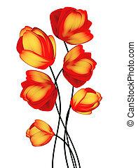 tulipaner, blomster, isoleret, på hvide, baggrund.