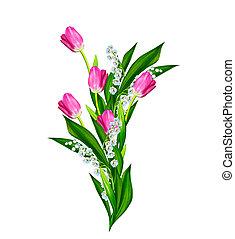 tulipaner, isoleret, baggrund., forår, hvid blomstrer