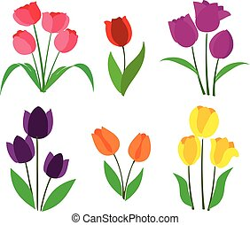 tulipaner, vektor, farvet