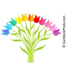 tulipanes, bouqet