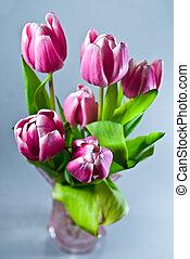 tulipanes, en, florero