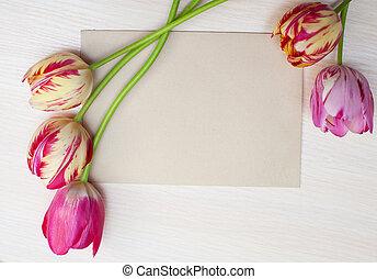 tulipanes, en, un, fondo blanco, con, espacio, para, texto