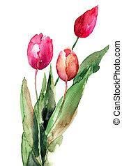 tulipanes, tres, flores
