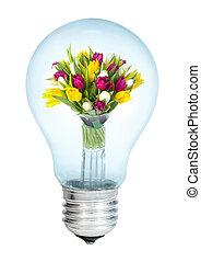 tulipany, electrobulb, grono