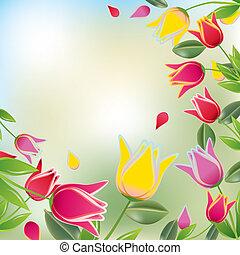 tulipe, coloré, fond