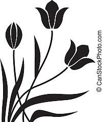 tulipe, fond