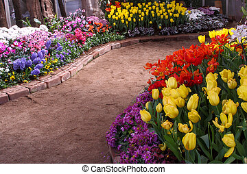 tulipes, are, grandi, et, exquisite., parcs