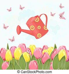 tulipes, arrosage, champ, conception, boîte, fleurir, ton, rouges