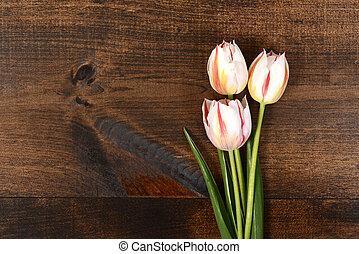 tulipes, blanc, bois