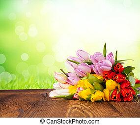 tulipes, bois, coloré