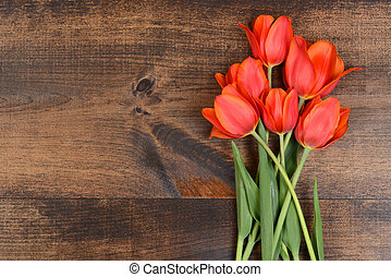 tulipes, bois, rouges