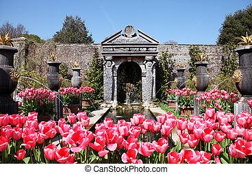 tulipes, château, arundel, jardin