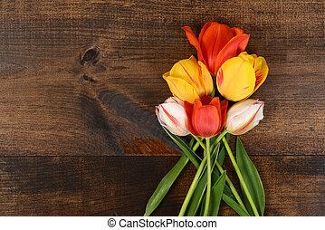 tulipes, coloré, bois