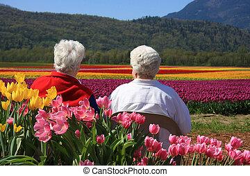 tulipes, dames, personnes agées